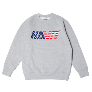USA SWEAT SHIRT (GRAY)